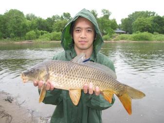 Coon-Rapids-Carp-2010-2